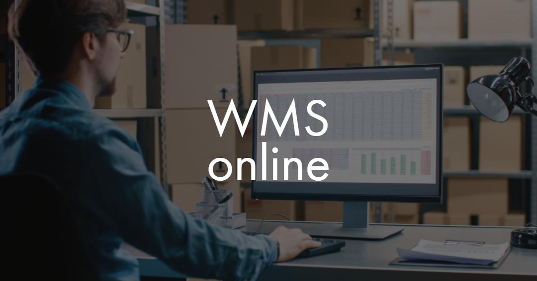 Przeznaczenie systemu WMS online